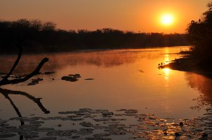 Kruger National Park lakeside sunset
