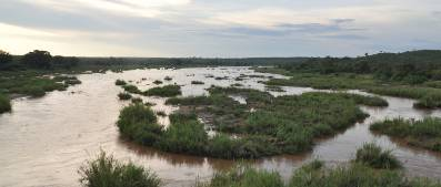 Kruger Park waterway
