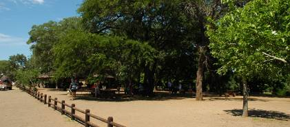 Picnic Spots  Relax Under the Trees  Kruger National Park Guide