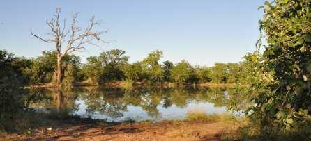 Kruger National Park lake