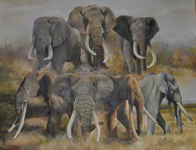 Magnificent Seven elephants