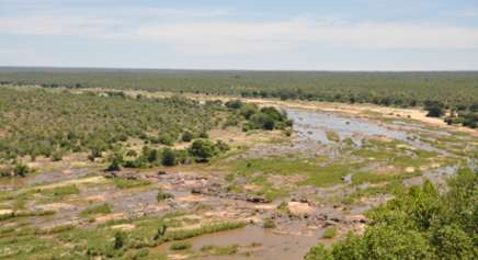 Olifants River from Olifants Rest Camp