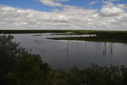 Pioneer Dam, Mopani Rest Camp