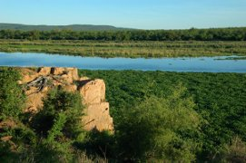 Kruger National Park river