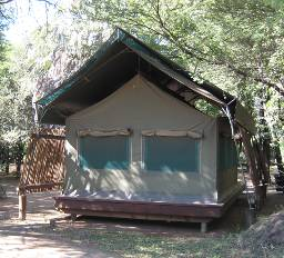 Letaba Rest Camp safari tent