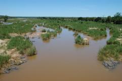 Kruger National Park river
