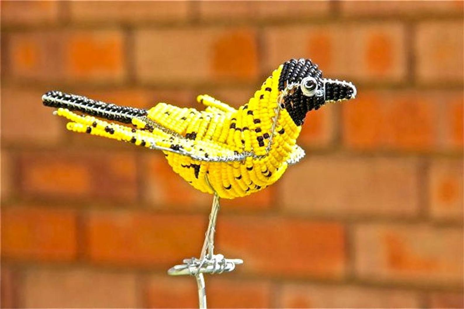 Hadeda yellow beaded bird